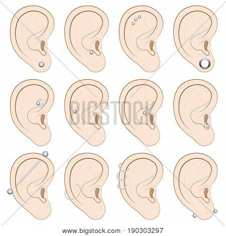 Ear piercings chart - twelve different illustrated examples on white background.