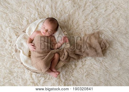 Two week old newborn baby boy swaddled in a beige wrap and sleeping in a round wooden trench bowl. Shot in the studio on a cream colored flokati rug background.