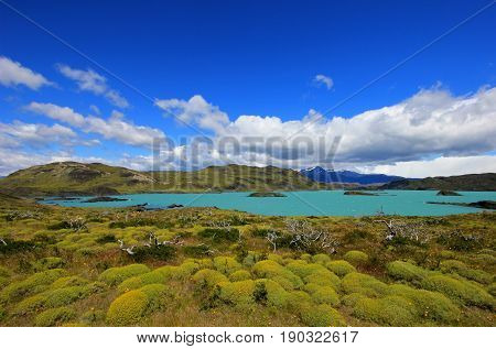 Nordenskjold lake, Torres Del Paine National Park, Patagonia, Chile Southamerica