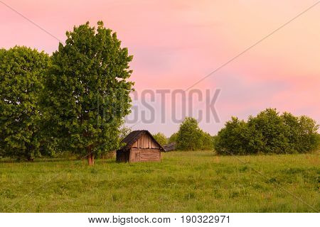 The Little Shed Under A Tree On Sunset Sky Background
