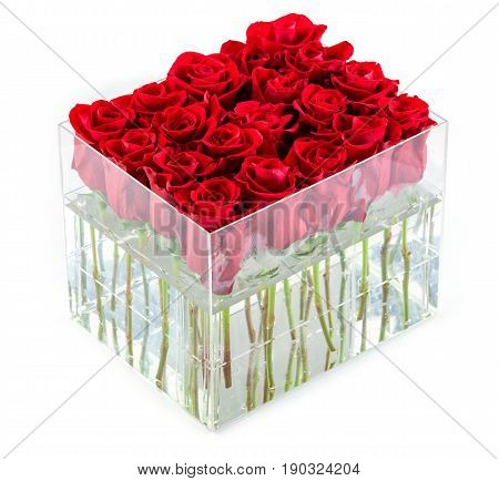 Bunch of red roses in container over white background