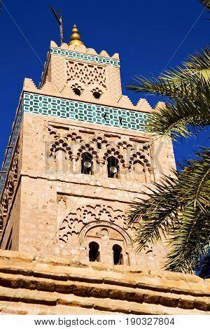History   Maroc Africa  Minaret Palm    Sky