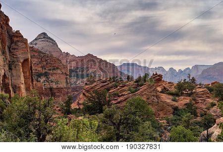 Zion Nation Park Utah. Georgeous landscape and rocky terrain.