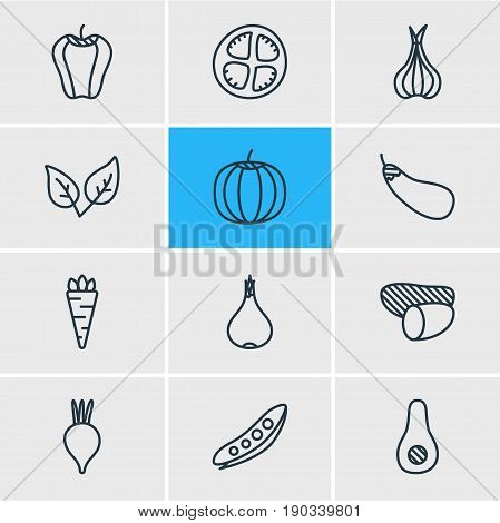 Vector Illustration Of 12 Food Icons. Editable Pack Of Garlic, Beet, Tuber And Other Elements.