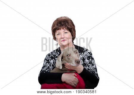 Sitting older woman holding weimaraner dog on arms. Both look at the camera. White background