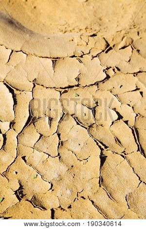 Brown Dry   In Sahara Desert Morocco   Erosion And Abstract