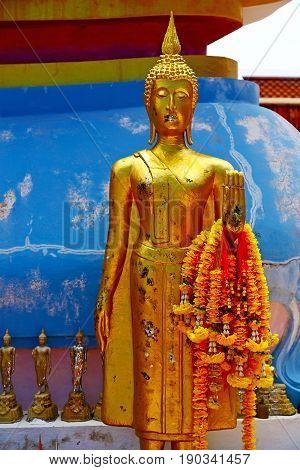 Siddharta     The Temple Bangkok Asia   Blue Flower
