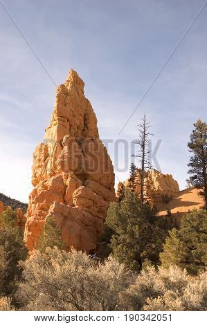 Beautiful red-rock formation reflecting the sun in the evening light at Bryce Canyon Utah.