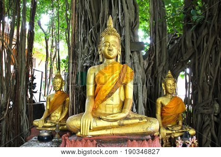 Buddha statue beautiful of Wat Kae Temple at Suphanburi Thailand.