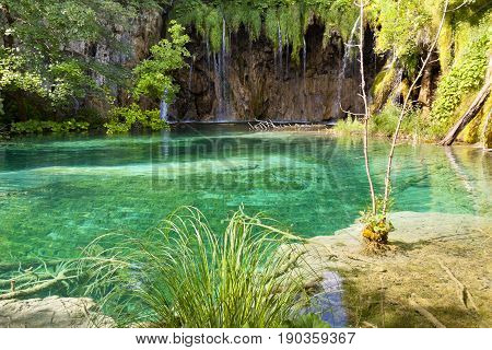 Clean water on the Plitvice Lakes - Croatia Europe.