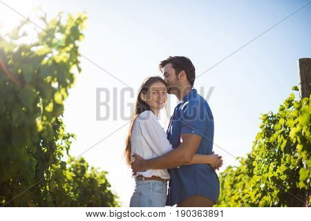 Smiling woman hugging boyfriend amidst plants at vineyard during sunny day