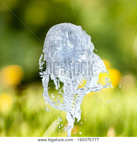 Jet Of Water Upward Stream Isolated On Lawn Background 3D