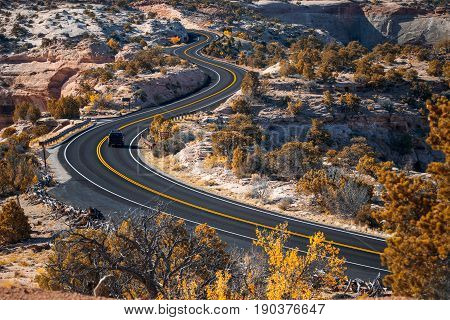 Road and autumn trees in Canyonlands National Park Utah USA