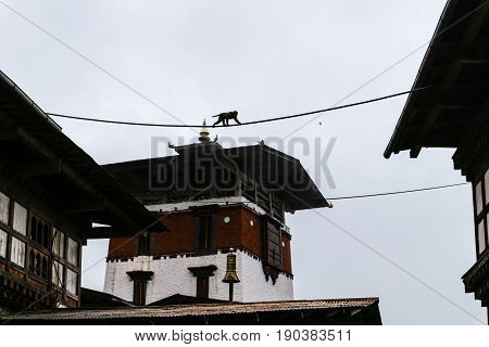 Inner view of Trongsa Dzong one of the oldest Dzongs in Bumthang Bhutan Asia. Wild monkey walking on a rope between temple roofs.
