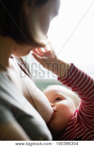 Anonymous woman giving breast to newborn baby.