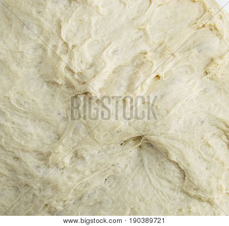 Kneading dough, fermented dough in a basin, dough for making bread