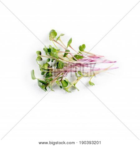 Heap of radish micro greens on white background. Healthy eating concept of fresh garden produce organically grown as a symbol of health and vitamins from nature. Microgreens closeup