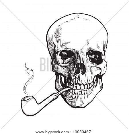 Hand drawn human skull smoking lacquered wooden pipe, black and white sketch style vector illustration isolated on white background. Realistic hand drawing of skull with smoking pipe