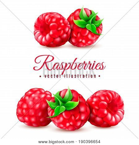 Realistic Berry Raspberries Icon Set.Red Bright Raspberries Realistic Photo Vector.Bright Color Raspberries with Green Leaves.Macro Raspberries Realistic Photo Illustration, Healthy Good Food Concept.