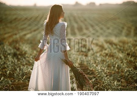 Young woman in long white lace dress on cornfield. She stands with bouquet of wild flowers in her hands. Back view.