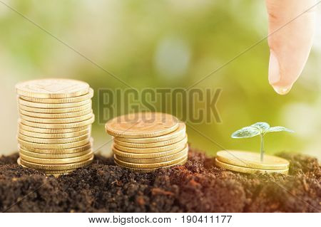 saving money preset by Male hand water plant money coin and small tree growing up concept in business finance and account bank