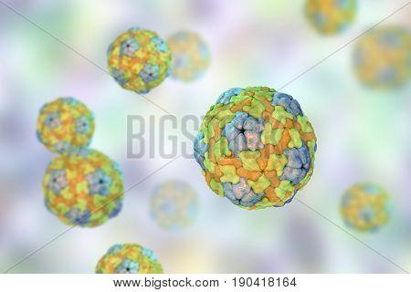 Saliviruses, a novel genus of viruses from Picornaviridae family which causes gastroenteritis. 3D illustration