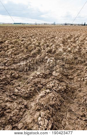 Farmland. Furrows On Agricultural Land