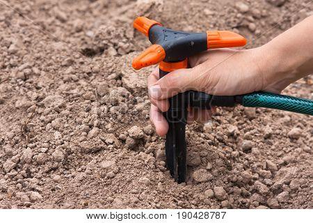hand installing sprinkler for irrigation of garden