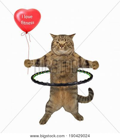 The cat is rolling a hula hoop and holding a red balloon. White background.