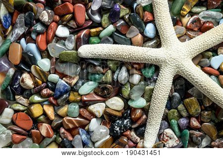 White star fish with small color stones close-up colorful pebbles with seastar detail