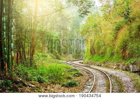 Narrow-gauge railway from Yuejin to Bagou in the jungle. Jiayang Mining Region. Sichuan province. China