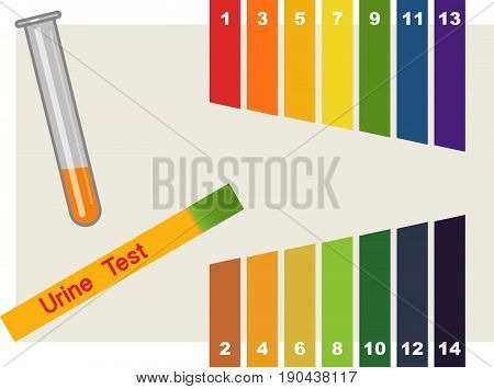 Urine Test . Hand holding test tube with pH indicator comparing color to scale and litmus strips for measurement of acidity.
