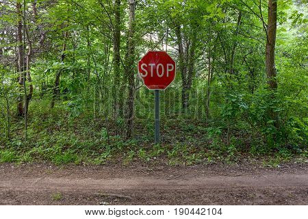 bold red stop sign in rural summer forest with dirt road
