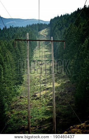 Telephone poles running down a trail in the mountains