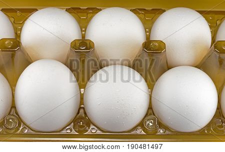 the White big  eggs in the box