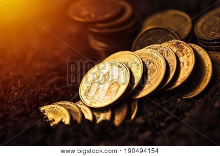 Bank loans for agricultural production Serbian dinar currency coins in fertile soil