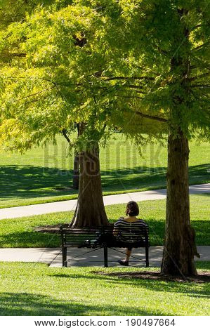 Austin's capitol garden, a woman sits on a bench