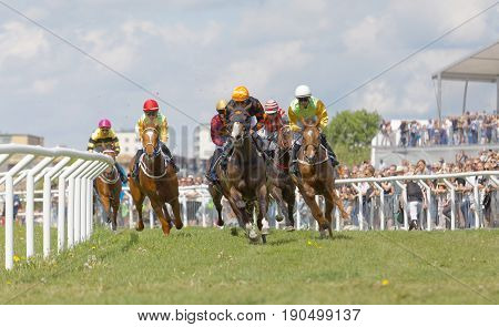 STOCKHOLM SWEDEN - JUNE 06 2017: Tough fight between many jockeys riding arabian race horses at Nationaldags Galoppen at Gardet. June 6 2017 in Stockholm Sweden