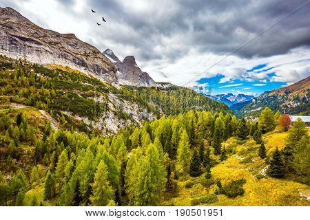 Autumn day. The shores of the glacial lake in the Dolomites. On the mountain slopes there is a coniferous forest