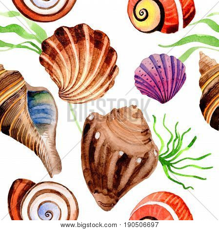 Watercolor summer beach seashell tropical elements pattern. Underwater creatures: mollusk, cockleshell, scallop and others.