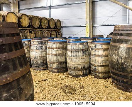 Whisky barrels in warehouse of distillery in Scotland