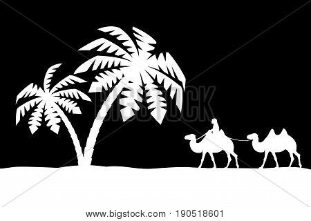 The man on the camel in palm trees.