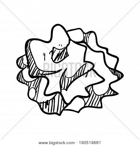 crumpled paper ball doodle icon vector illustration graphic design
