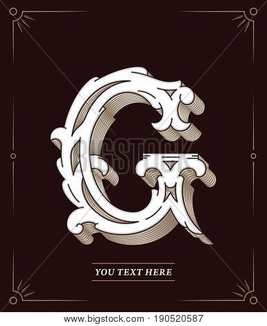 Elegant vector colored letter G for any use