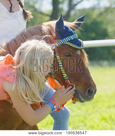 STOCKHOLM SWEDEN - JUNE 06 2017: Young girl strokes a cute pony gallop race horses on the muffle at Nationaldags Galoppen at Gardet. June 6 2017 in Stockholm Sweden