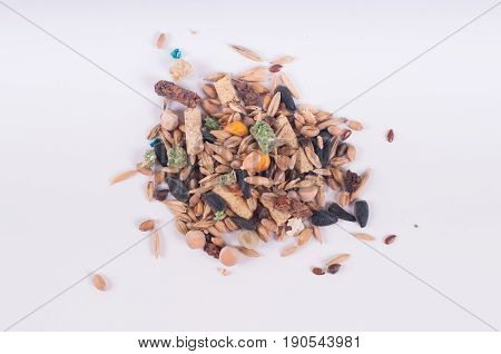 Rodent dry food poured in a pile on white background