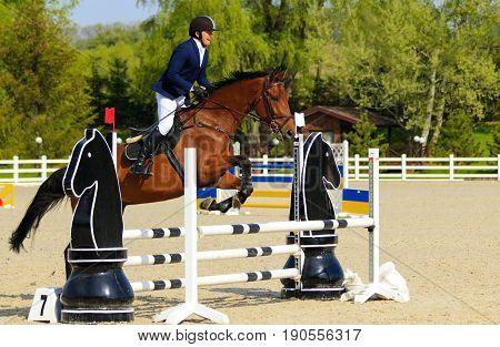 Kiev Ukraine- April 302017:Championship of Ukraine on equestrian sport among amateurs.