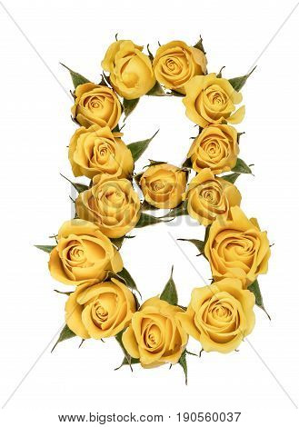 Arabic Numeral 8, Eight, From Yellow Flowers Of Rose, Isolated On White Background