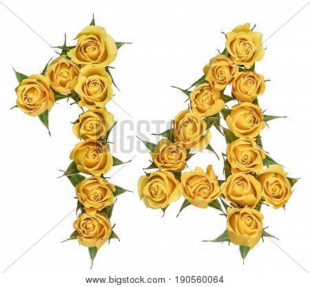 Arabic Numeral 14, Fourteen, From Yellow Flowers Of Rose, Isolated On White Background