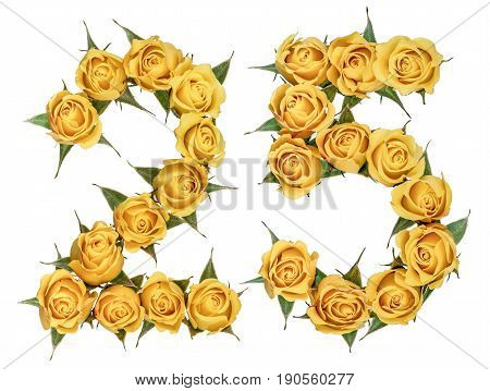 Arabic Numeral 25, Twenty Five, From Yellow Flowers Of Rose, Isolated On White Background
